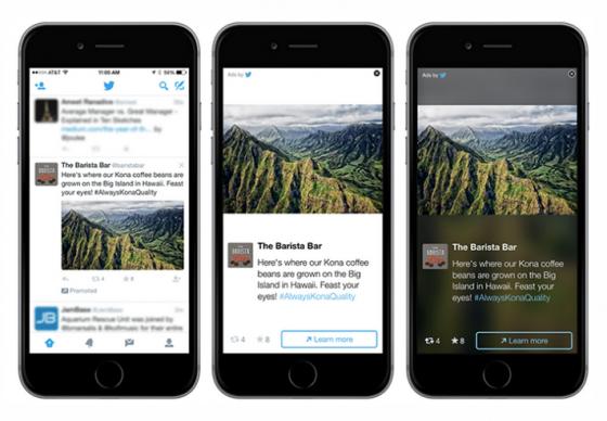 tweets-sponsorises-formats-adaptables