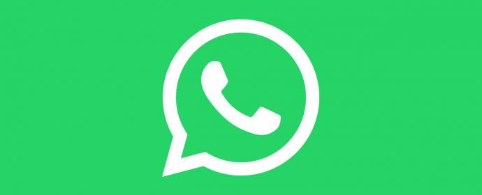 A venir: WhatsApp Business pour les petites entreprises et une solution payante pour les autres